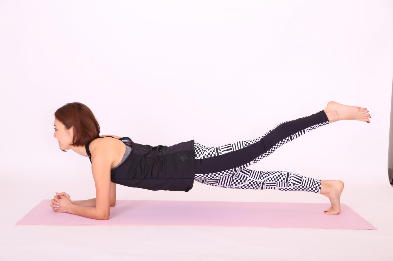 Arm/Leg Lift Plank