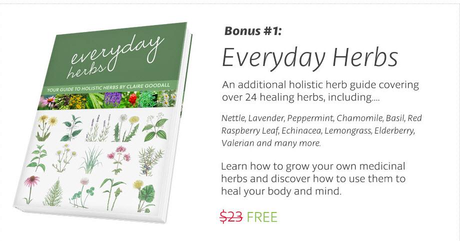 everyday-herbs