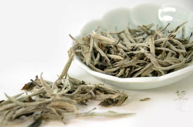 Twinings Pure White Tea: The Best Tea for Weight Loss