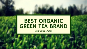 Best Organic Green Tea Brand