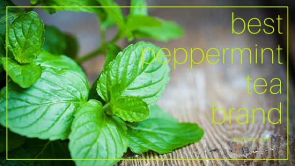 Best Peppermint Tea Brand